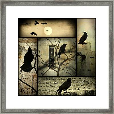 A Collage Of Crows Framed Print by Gothicolors Donna Snyder