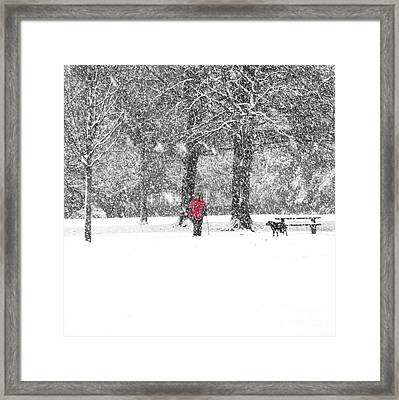 A Dash Of Red Framed Print by Karin Ubeleis-Jones