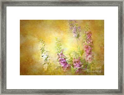 A Day In June Framed Print by Betty LaRue