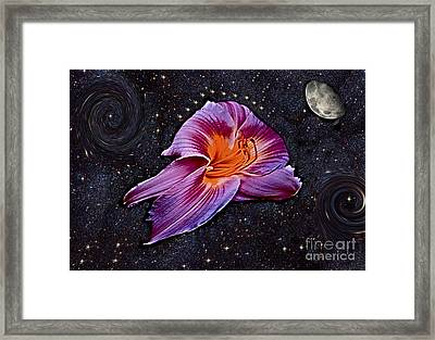 A Daylily Bloom Rockets To The Moon Framed Print by ImagesAsArt Photos And Graphics