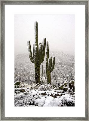 A Desert Southwest Snow Day  Framed Print by Saija  Lehtonen