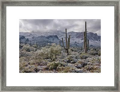 A Desert Winter Wonderland  Framed Print by Saija  Lehtonen