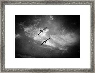 A Deux Framed Print by Taylan Soyturk