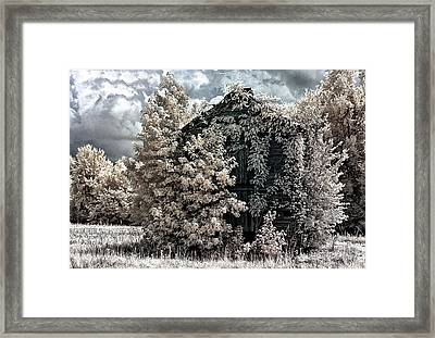 A Different View Framed Print by Donald Brown