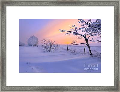 A Drift Framed Print by Dan Jurak