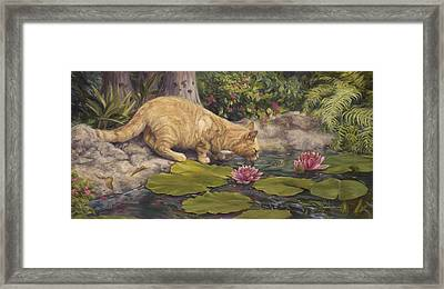 A Drink At The Pond Framed Print by Lucie Bilodeau