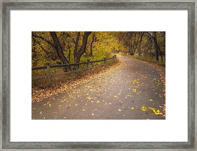 A Fall Walk Framed Print by Michael Van Beber