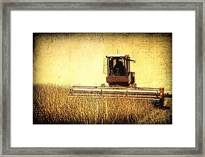 A Field For Harvest Framed Print by Lincoln Rogers