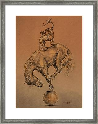 A Fine Balance Framed Print by Derrick Higgins