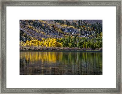 A Fine Line Between Summer And Fall Framed Print by Cat Connor