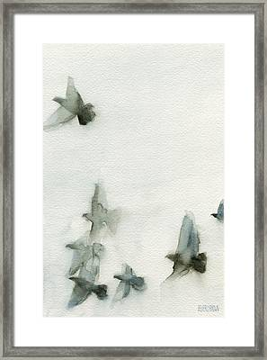 A Flock Of Pigeons 1 Watercolor Painting Of Birds Framed Print by Beverly Brown Prints