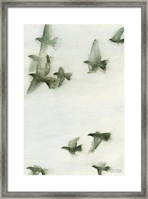 A Flock Of Pigeons 2 Watercolor Painting Of Birds Framed Print by Beverly Brown