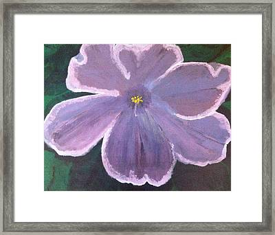 A Flower For Gran Framed Print by Rob Spencer