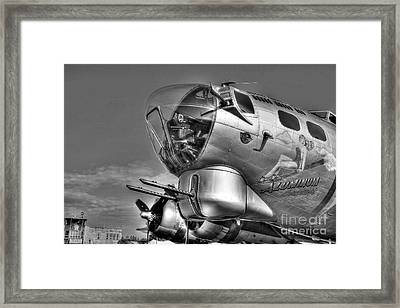A Flying Fortress Bw Framed Print by Mel Steinhauer