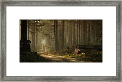 A Forest Walk Framed Print by Jan Paul Kraaij