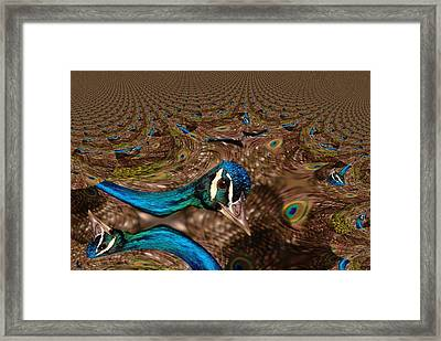 A Fractual Peacock  Framed Print by Jeff Swan