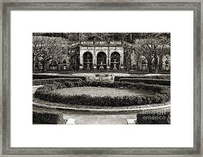 A Garden Of Rare Beauty Framed Print by Marcia Lee Jones
