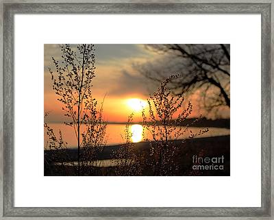 A Golden Moment In Time Framed Print by Inspired Nature Photography Fine Art Photography
