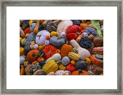 A Great Harvest Framed Print by Garry Gay