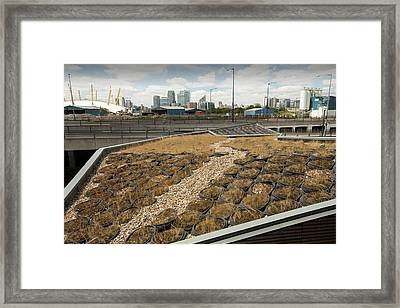 A Green Roof At The Crystal Building Framed Print by Ashley Cooper