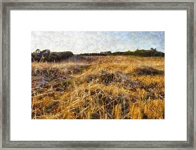 A Harvested Field Framed Print by Georgia Fowler