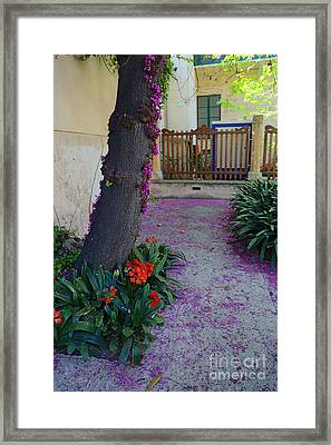 A Hint Of Spring Framed Print by Rene Triay Photography