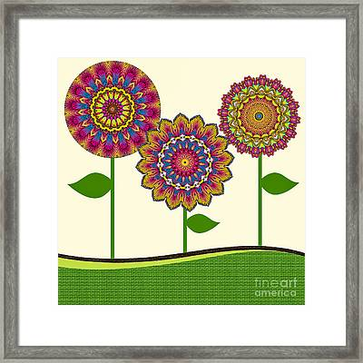 A Kaleidoscope Of Flowers Framed Print by Amy Cicconi