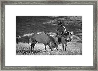 A Kind Moment Framed Print by Sandra Bronstein