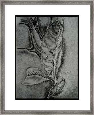 A Leaf Framed Print by Aninda Dey