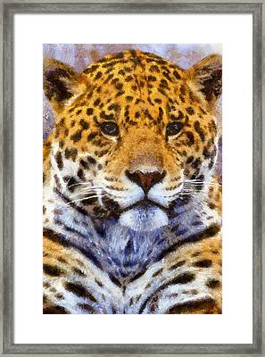 A Leopard Never Changes His Spots Framed Print by Georgiana Romanovna