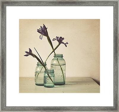 A Little Bit Country Framed Print by Amy Weiss