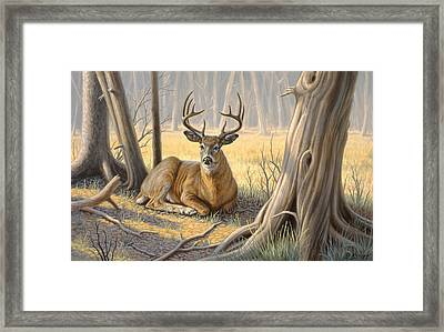 'a Little Shade' Framed Print by Paul Krapf