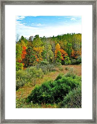 A Lofty Perch Framed Print by Frozen in Time Fine Art Photography