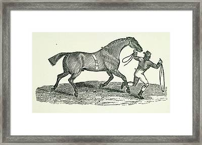 A Man And Horse Framed Print by British Library