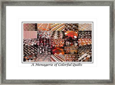 A Menagerie Of Colorful Quilts -  Autumn Colors - Quilter Framed Print by Barbara Griffin