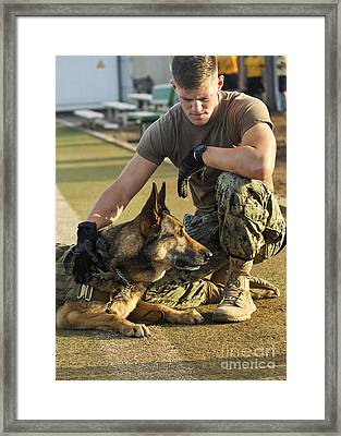 A Military Working Dog Handler, Pets Framed Print by Stocktrek Images