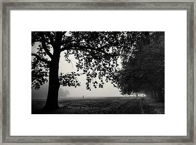 A Misty Monochrome Morning Framed Print by Chris Fletcher