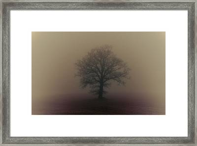 A Misty Morning Framed Print by Chris Fletcher