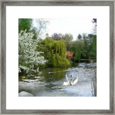 A Morning In Spring Framed Print by Morag Bates
