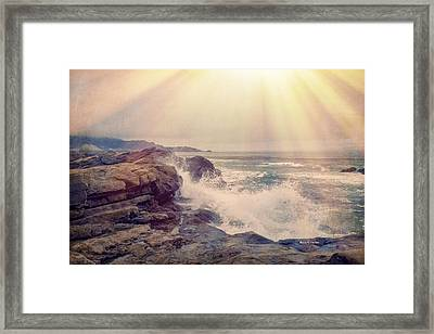 A Mysterious Morning - Point Lobos Framed Print by Angela A Stanton