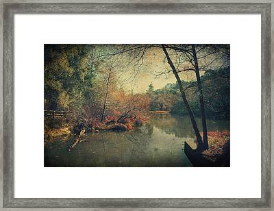 A New Day Another Chance Framed Print by Laurie Search