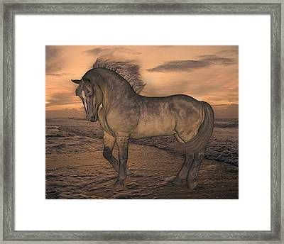 A New Day Framed Print by Betsy Knapp