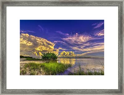 A New Experience Framed Print by Marvin Spates