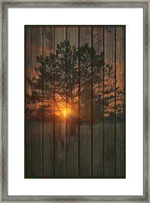 A New Tree Framed Print by Tom York Images