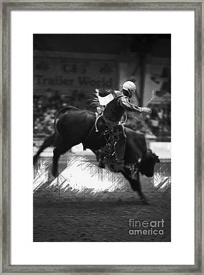 A Night At The Rodeo V4 Framed Print by Douglas Barnard