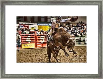 A Night At The Rodeo V6 Framed Print by Douglas Barnard