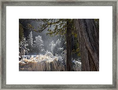 A North Woods Fairy Tale Framed Print by Mary Amerman