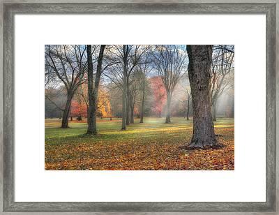 A November Morning Framed Print by Bill Wakeley