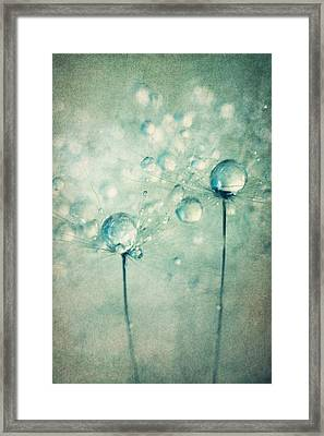 A Pair Of Sparkles Framed Print by Sharon Johnstone