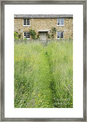 A Pathway Home Framed Print by Tim Gainey